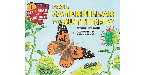 From Caterpillar to Butterfly (Revised) (Paperback) (Deborah Heiligman) - image 1 of 1