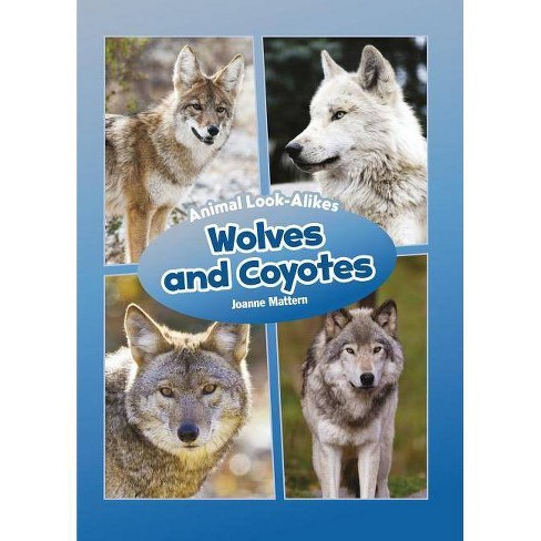 Wolves and Coyotes - (Core Content Science -- Animal Look-Alikes) by  Joanne Mattern (Hardcover) - image 1 of 1