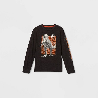 Boys' Jurassic World Long Sleeve Graphic T-Shirt - Gray