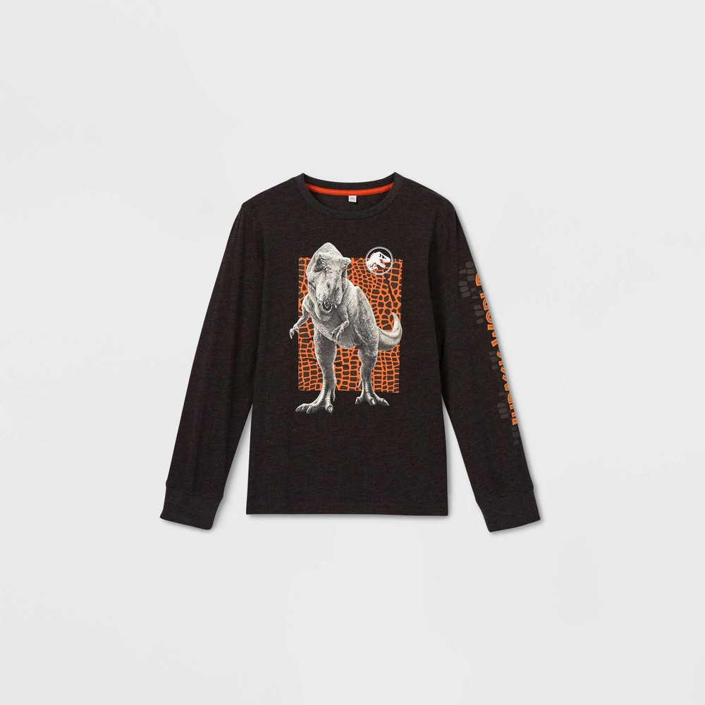 Boys' Jurassic World Long Sleeve Graphic T-Shirt - Gray XS thumbnail