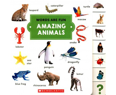 Amazing Animals (Hardcover) - image 1 of 1