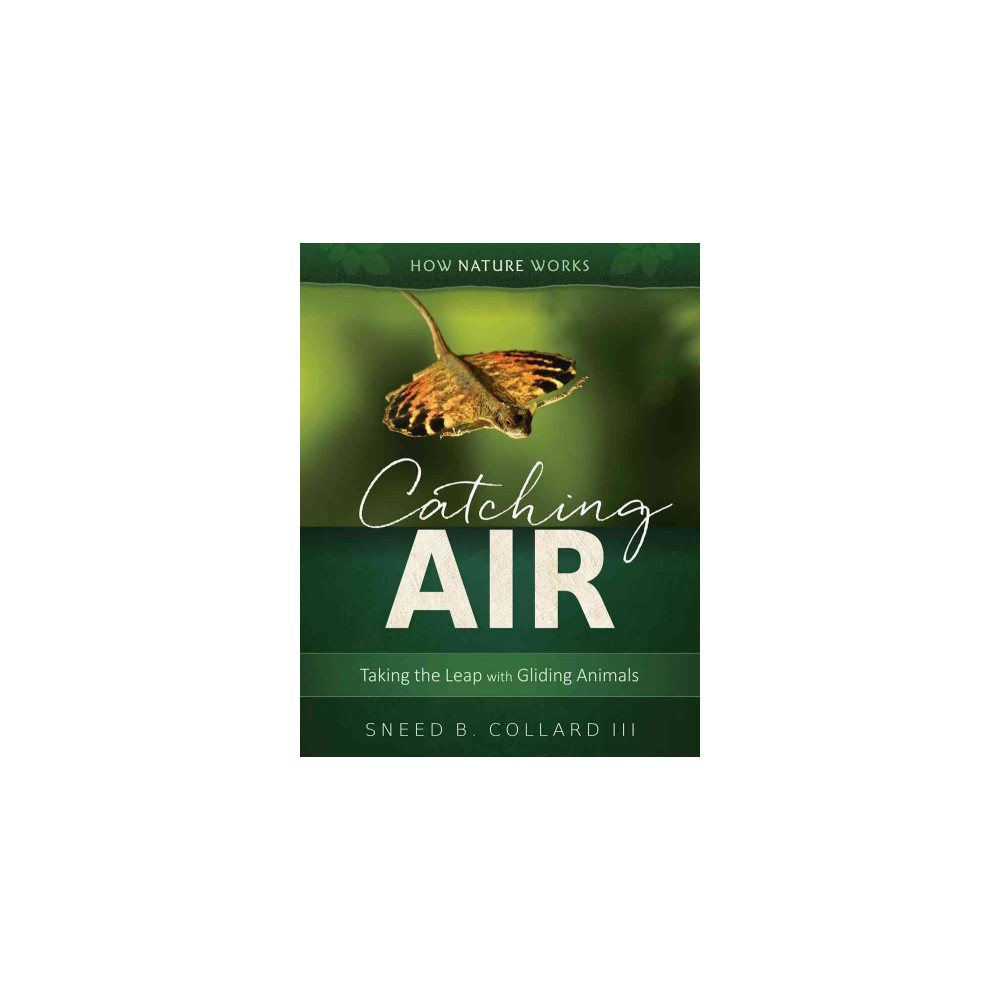 Catching Air : Taking the Leap With Gliding Animals - by Sneed B. Collard (Hardcover)
