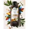 Herbal Essences Bio:Renew Hydrate Coconut Milk Shampoo - 13.5 fl oz - image 3 of 3