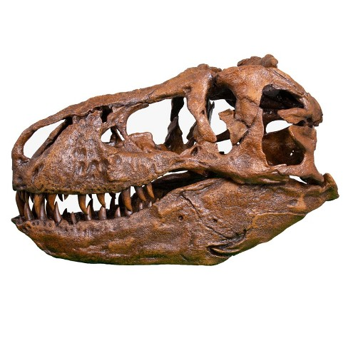 Master Replicas T-Rex Skull Full Scale Smithsonian Fossil Replica - 60 Inches - image 1 of 4