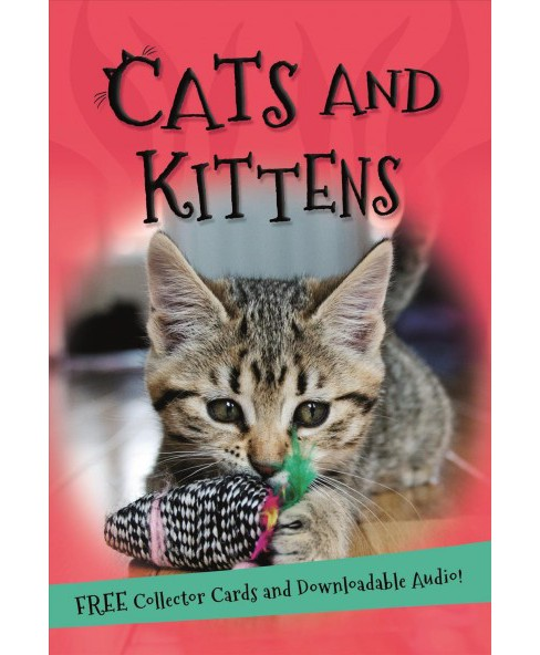 Cats and Kittens -  (It's All About…) (Paperback) - image 1 of 1