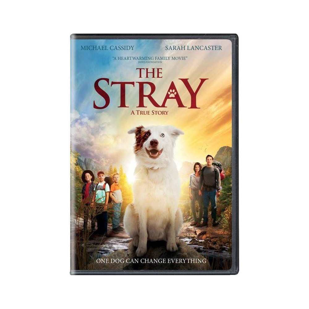 The Stray (DVD), movies