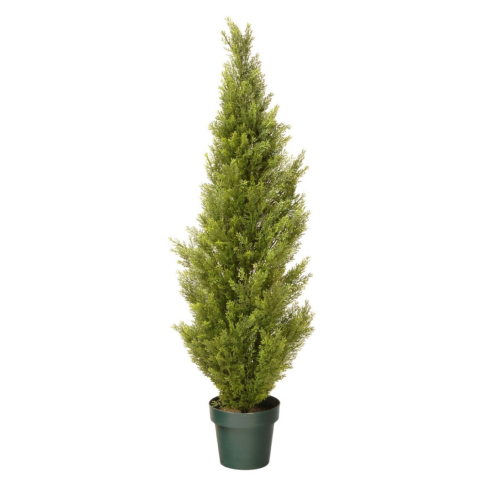 Image of Arborvitae with Green Pot (48)