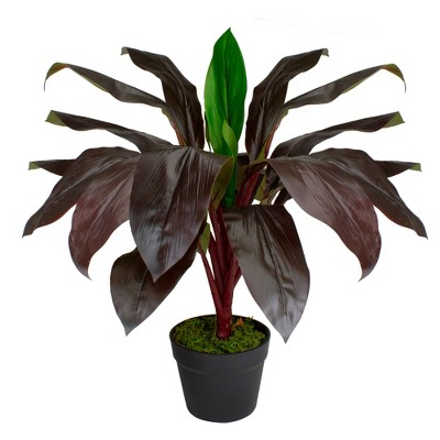 """Northlight 23"""" Red and Green Artificial Dracaena Potted Plant Home Decor"""