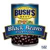 Bush's Black Beans - 15oz - image 3 of 4