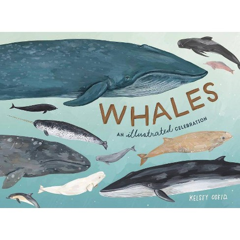 Whales - by  Kelsey Oseid (Hardcover) - image 1 of 1