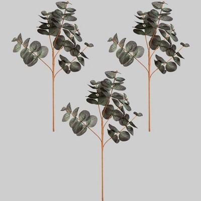 3pk Faux Picks Eucalyptus - Bullseye's Playground™