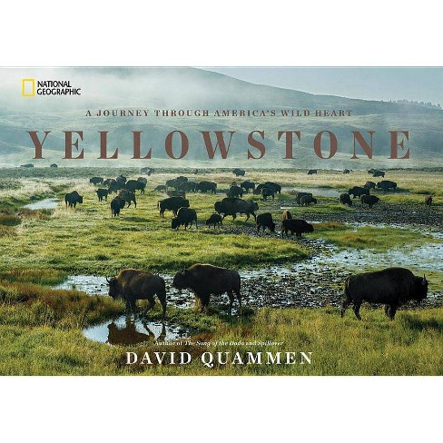 Yellowstone - by  David Quammen (Hardcover) - image 1 of 1