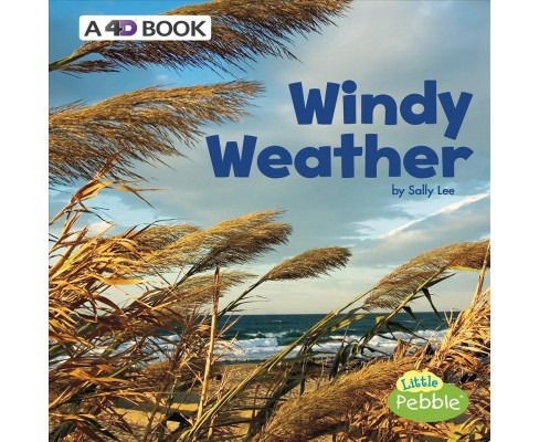 Windy Weather : A 4D Book -  (All Kinds of Weather) by Sally Lee (Paperback) - image 1 of 1
