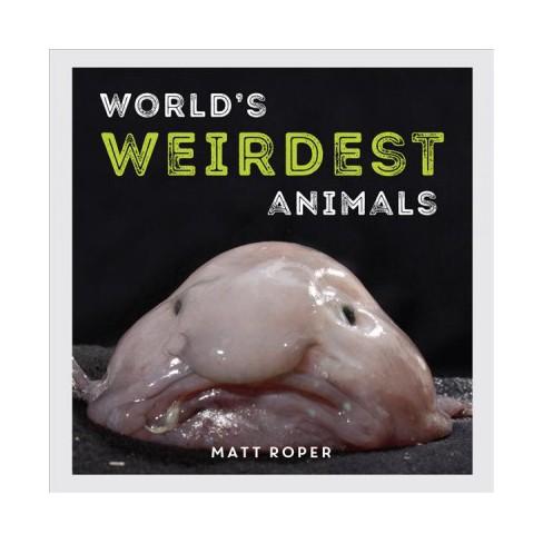 worlds weirdest animals