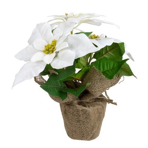 Northlight 10 Poinsettia Flower Artificial Christmas Floral Arrangement White Target