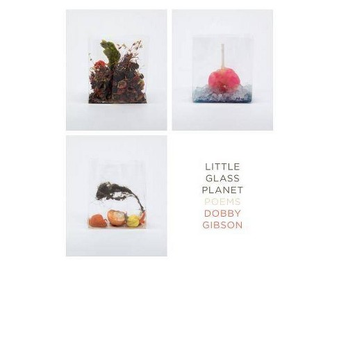 Little Glass Planet - by  Dobby Gibson (Paperback) - image 1 of 1