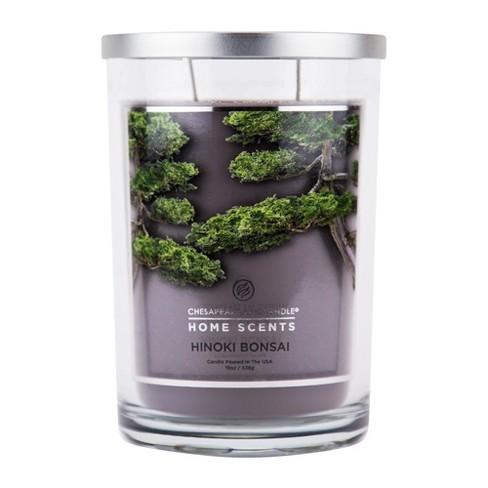 19oz Jar Candle Hinoki Bonsai - Home Scents By Chesapeake Bay Candle