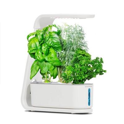 AeroGarden Sprout - White