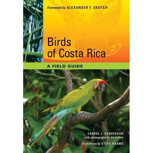 Birds of Costa Rica - by  Carrol L Henderson (Paperback) - image 1 of 1