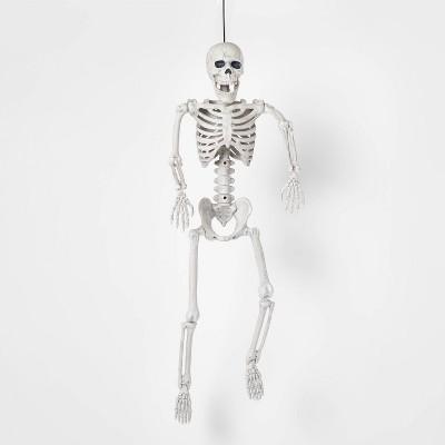 "24"" Posable Skeleton M Halloween Decorative Mannequin - Hyde & EEK! Boutique™"