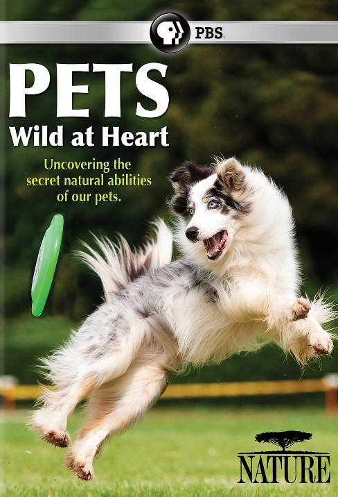 Nature:Pets wild at heart (DVD) - image 1 of 1