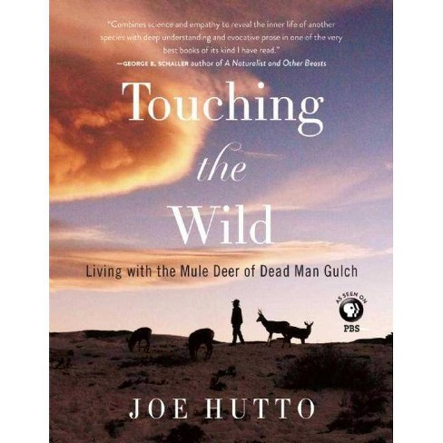 Touching the Wild - by  Joe Hutto (Paperback) - image 1 of 1