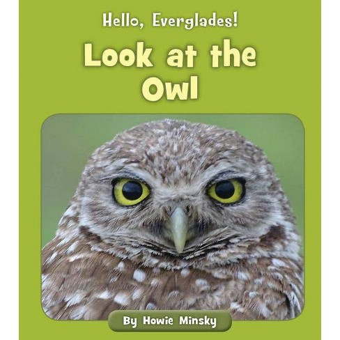Look at the Owl - (Hello, Everglades!) by  Howie Minsky (Paperback) - image 1 of 1
