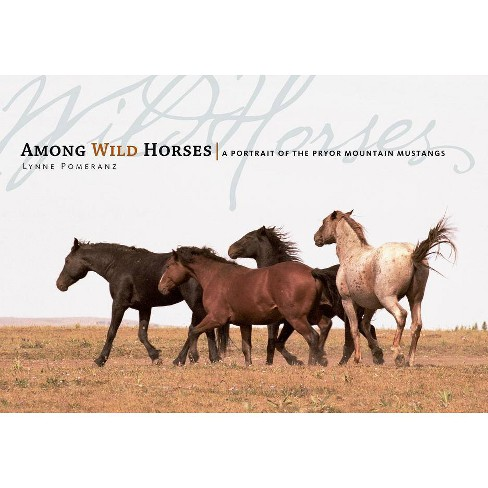 Among Wild Horses - by  Lynne Pomeranz (Hardcover) - image 1 of 1