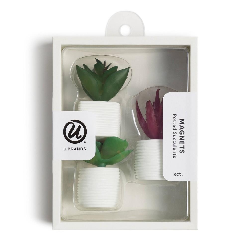 U Brands 3ct Succulent Plant Magnets