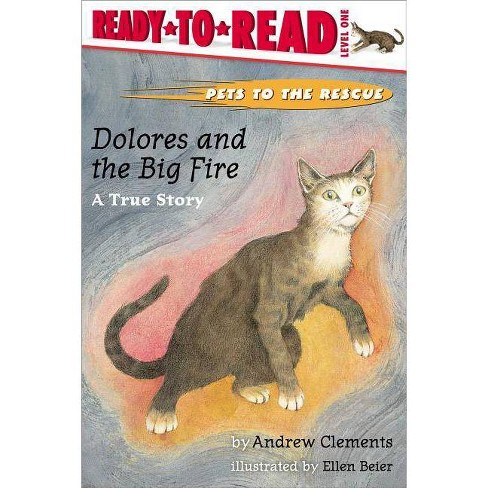 Dolores and the Big Fire - (Ready-To-Read - Level 1 (Hardcover)) by  Andrew Clements (Hardcover) - image 1 of 1