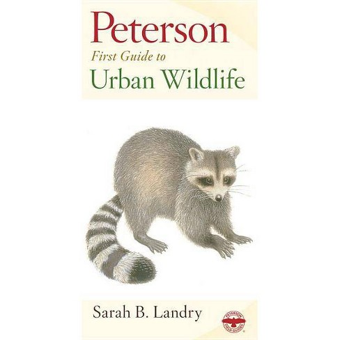 Peterson First Guide to Urban Wildlife - by  Sarah B Landry (Paperback) - image 1 of 1