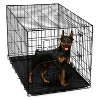 Oxgord Paws & Pals Two Door Wire Pet Crate - image 2 of 2