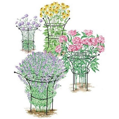 Essex Plant Support, Medium - Gardener's Supply Company