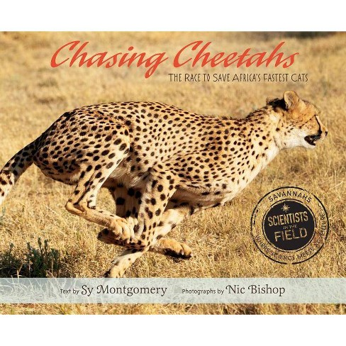 Chasing Cheetahs - (Scientists in the Field (Hardcover)) by  Sy Montgomery (Hardcover) - image 1 of 1
