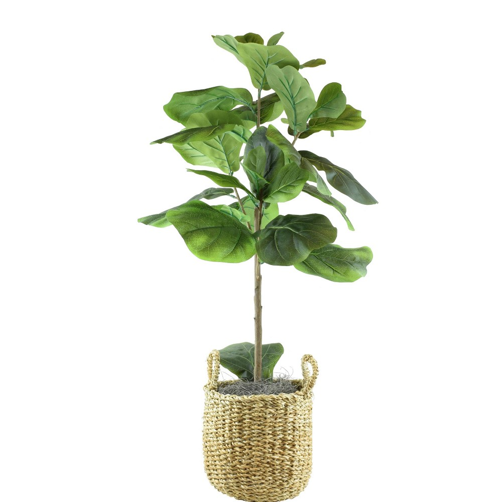 "Image of ""30"""" x 16"""" Artificial Fig in Basket with Handles Green - LCG Florals"""