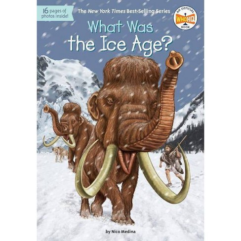 What Was the Ice Age? -  (What Was...?) by Nico Medina (Paperback) - image 1 of 1