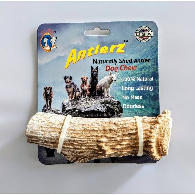 QT Dog Antlerz Natural Dog Chew Treat Dog Treats - 1ct