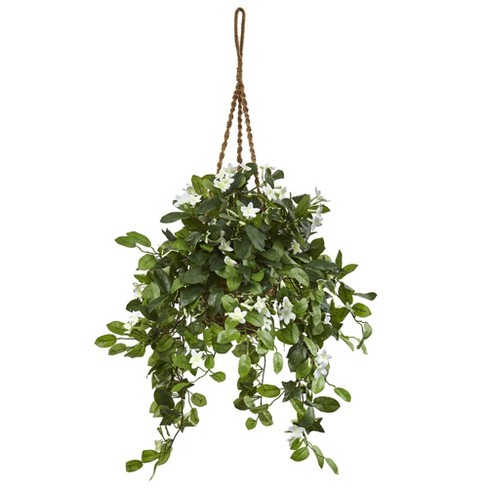 """44"""" x 23"""" Artificial Stephanotis Flowering Plant in Hanging Basket Green - Nearly Natural - image 1 of 1"""