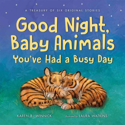 Good Night, Baby Animals You've Had a Busy Day : A Treasury of Six Original Stories (Hardcover)(Karen