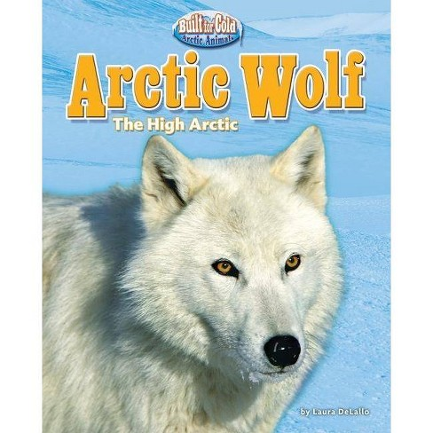 Arctic Wolf - (Built for Cold: Arctic Animals) by  Laura DeLallo (Hardcover) - image 1 of 1