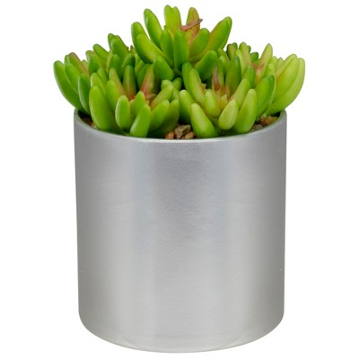 """Northlight 4.75"""" Potted Red and Green Artificial Sedum Succulent"""