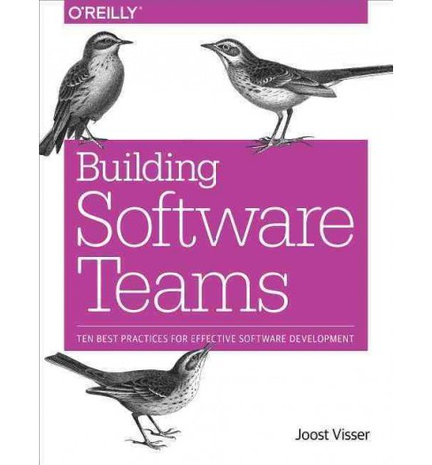Building Software Teams : Ten Best Practices for Effective Software Development (Paperback) (Joost - image 1 of 1