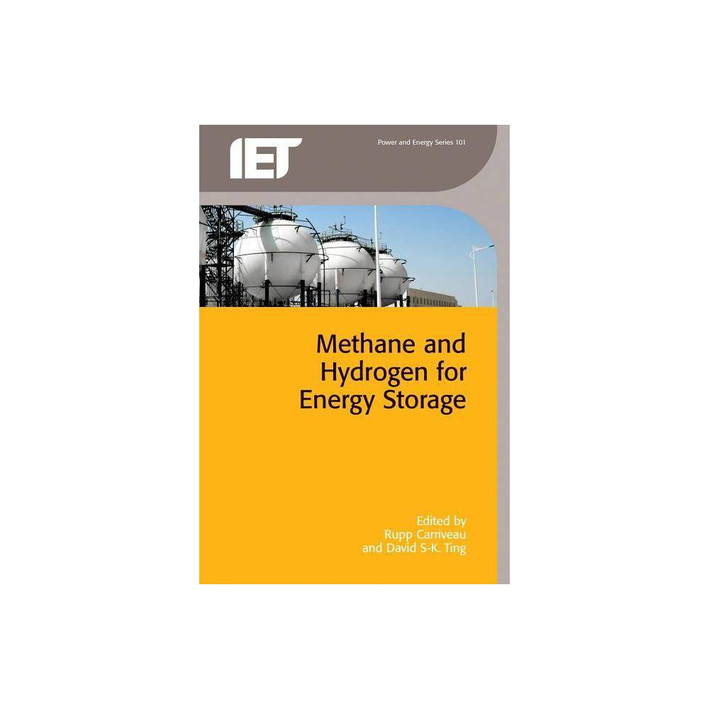 Methane and Hydrogen for Energy Storage - (Energy Engineering) (Hardcover)