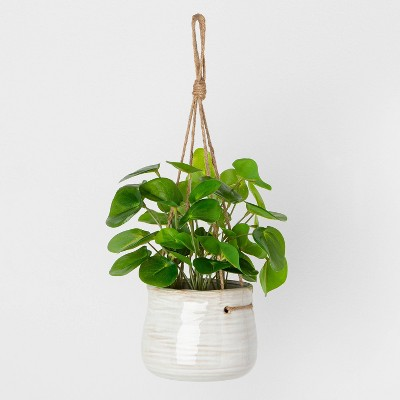 Faux Hanging Pilea Potted Plant - Hearth & Hand™ with Magnolia