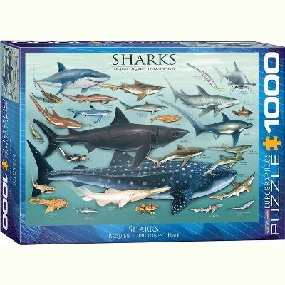 Eurographics Inc. Sharks 1000 Piece Jigsaw Puzzle