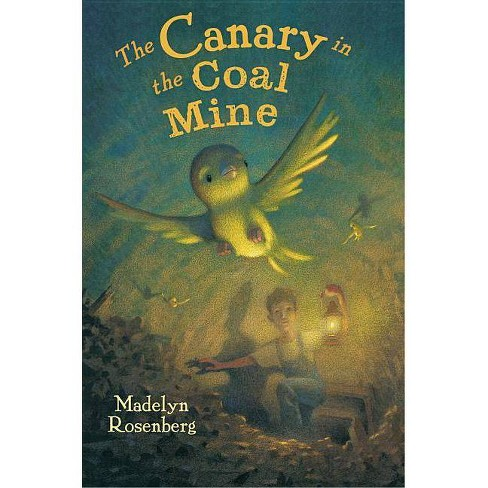 Canary in the Coal Mine - by  Madelyn Rosenberg (Hardcover) - image 1 of 1