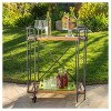 Eden Firwood and Iron Bar Cart - Antique Finish - Christopher Knight Home - image 4 of 4