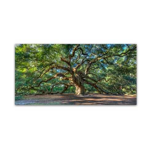 "'Angel Oak Charleston' by Pierre Leclerc Ready to Hang Canvas Wall Art (24""x47"") - image 1 of 3"