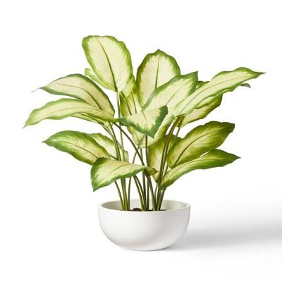 "20"" x 14"" Faux Aglaonema Silver Bay Plant in Ceramic Pot White - Hilton Carter for Target"