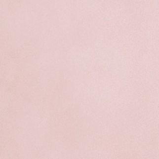 Nouveau Pink